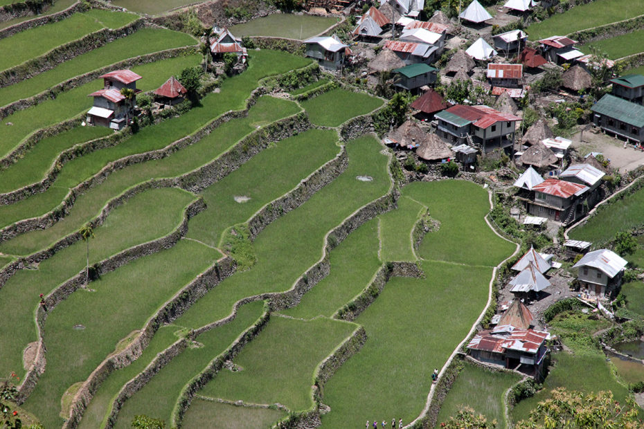 Rice terraces in northern Philippines