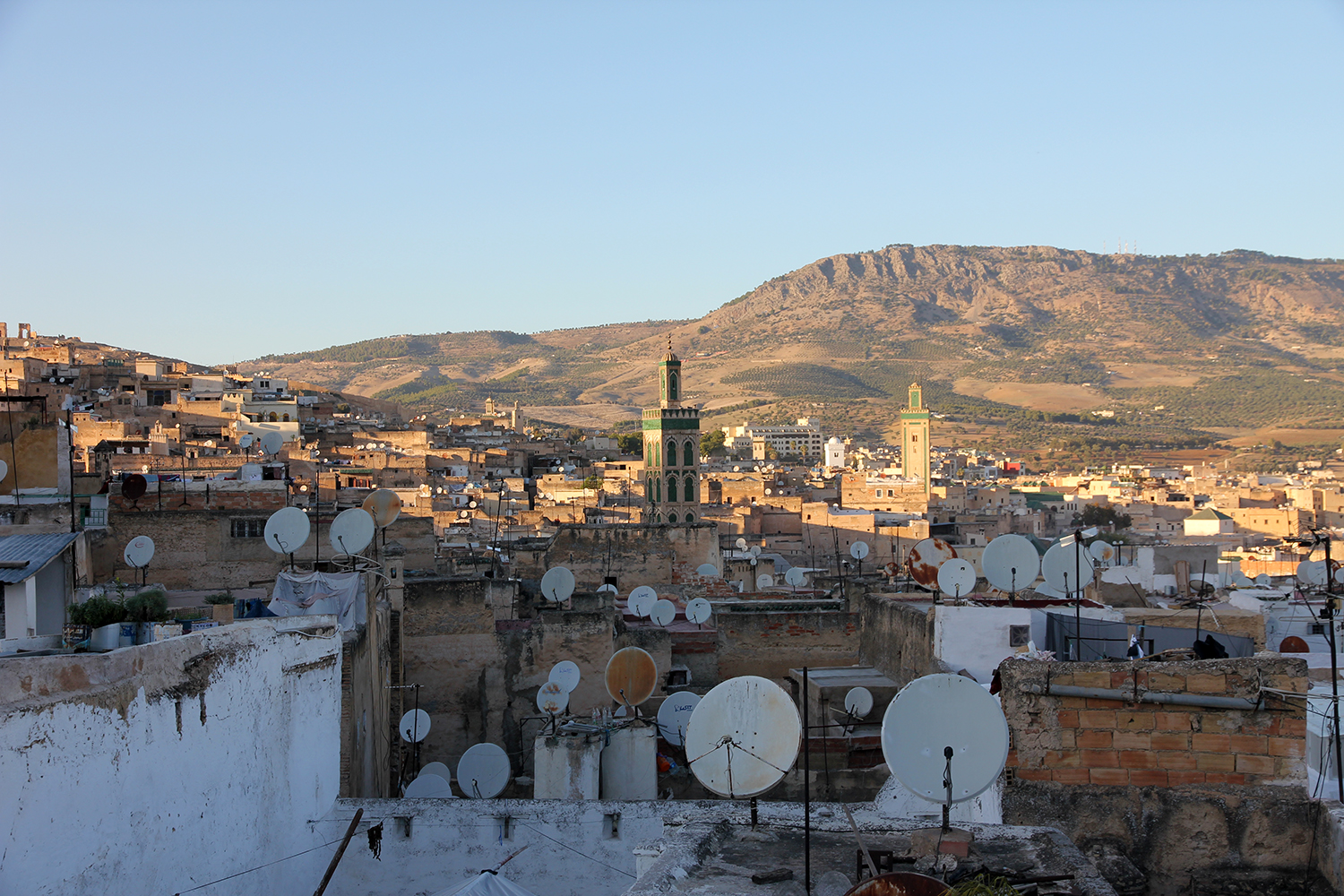 The Roofscape Of Fes