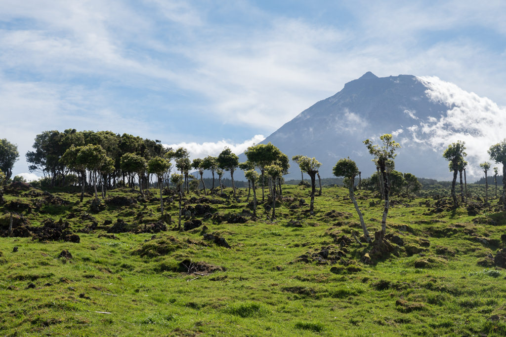 The 2,351m tall volcanic peak of Pico on Pico Island
