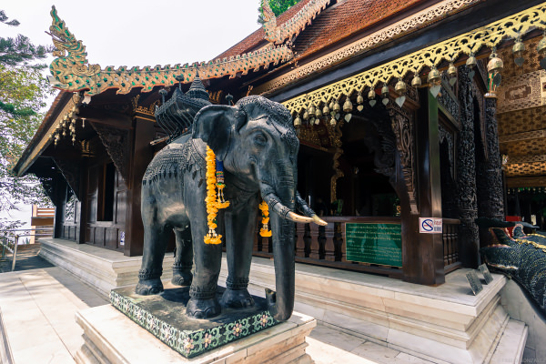 Chiang Mai: 11 Awesome (and Unusual) Things to Do • Indie